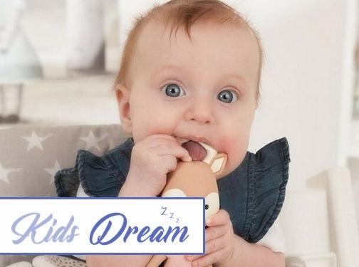 https://www.kidsdream.co.uk/ website